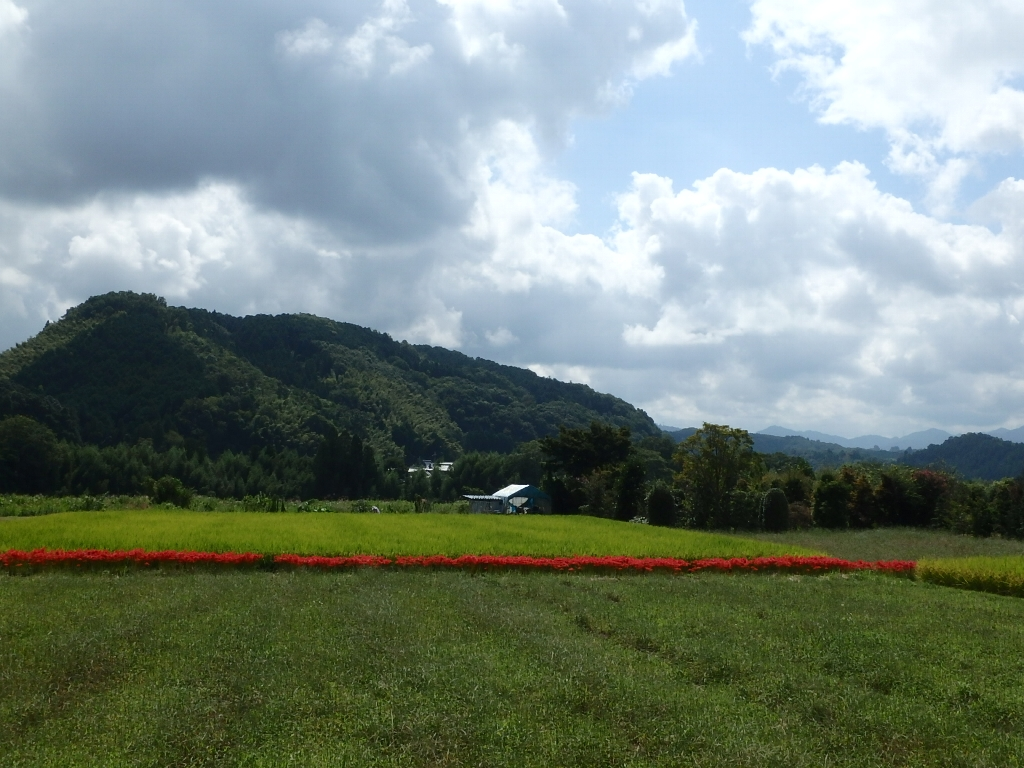 ビオビオⅡで奈良県吉野川(3回目)_c0113733_23583041.jpg