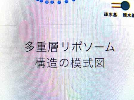 f0333938_20032379.jpg