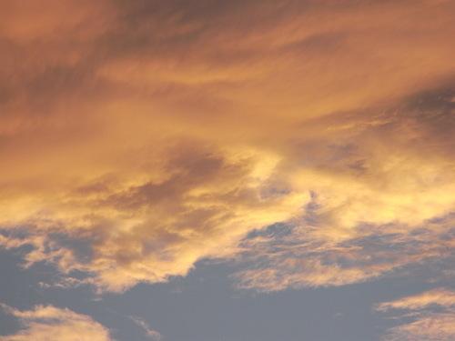 秋の新着! ~ザ・ニッポンラグジュアリー~ 【SHATIHOKO】の素 編_c0177259_4501443.jpg
