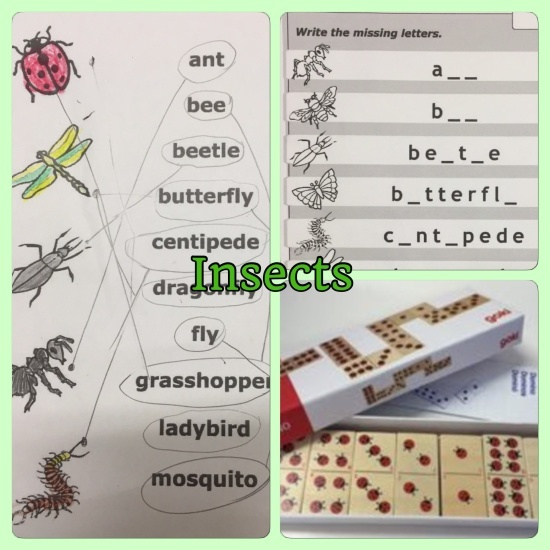 Insects 🐞 for kids English_a0285570_00381052.jpg