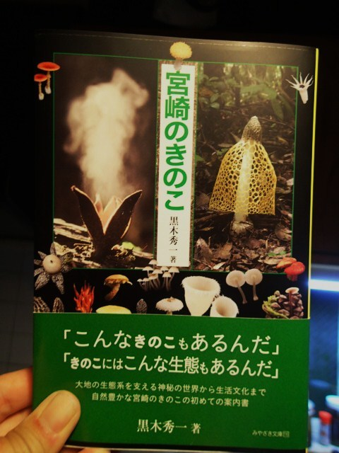 「宮崎のきのこ」_b0135573_06371923.jpg