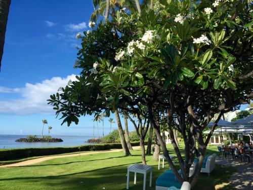 15年夏休みハワイ  14★やっとビーチでのんびり_d0285416_20445082.jpg