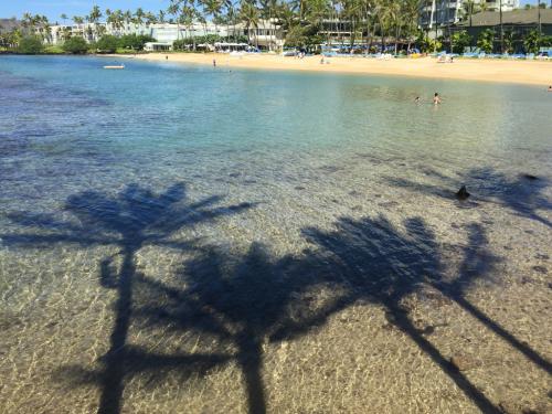 15年夏休みハワイ  14★やっとビーチでのんびり_d0285416_20445225.jpg