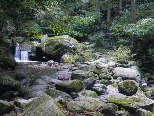 糸島の森と滝と・・・_a0315918_19194900.jpg