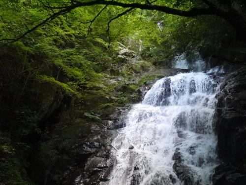 糸島の森と滝と・・・_a0315918_19203710.jpg