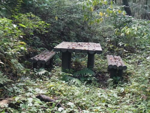 糸島の森と滝と・・・_a0315918_19263242.jpg