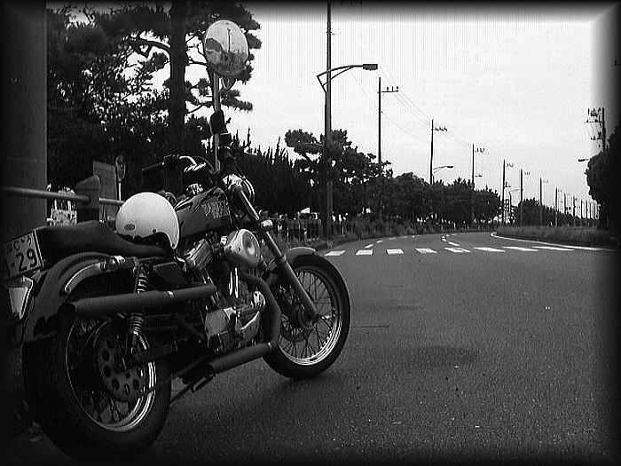 「 東京ララバイ~♪ 」_b0133126_9231760.jpg