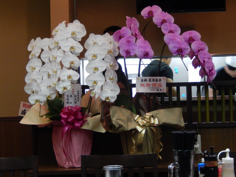 新宿5丁目に中国客向けインバウンド居酒屋がオープン_b0235153_12493360.jpg