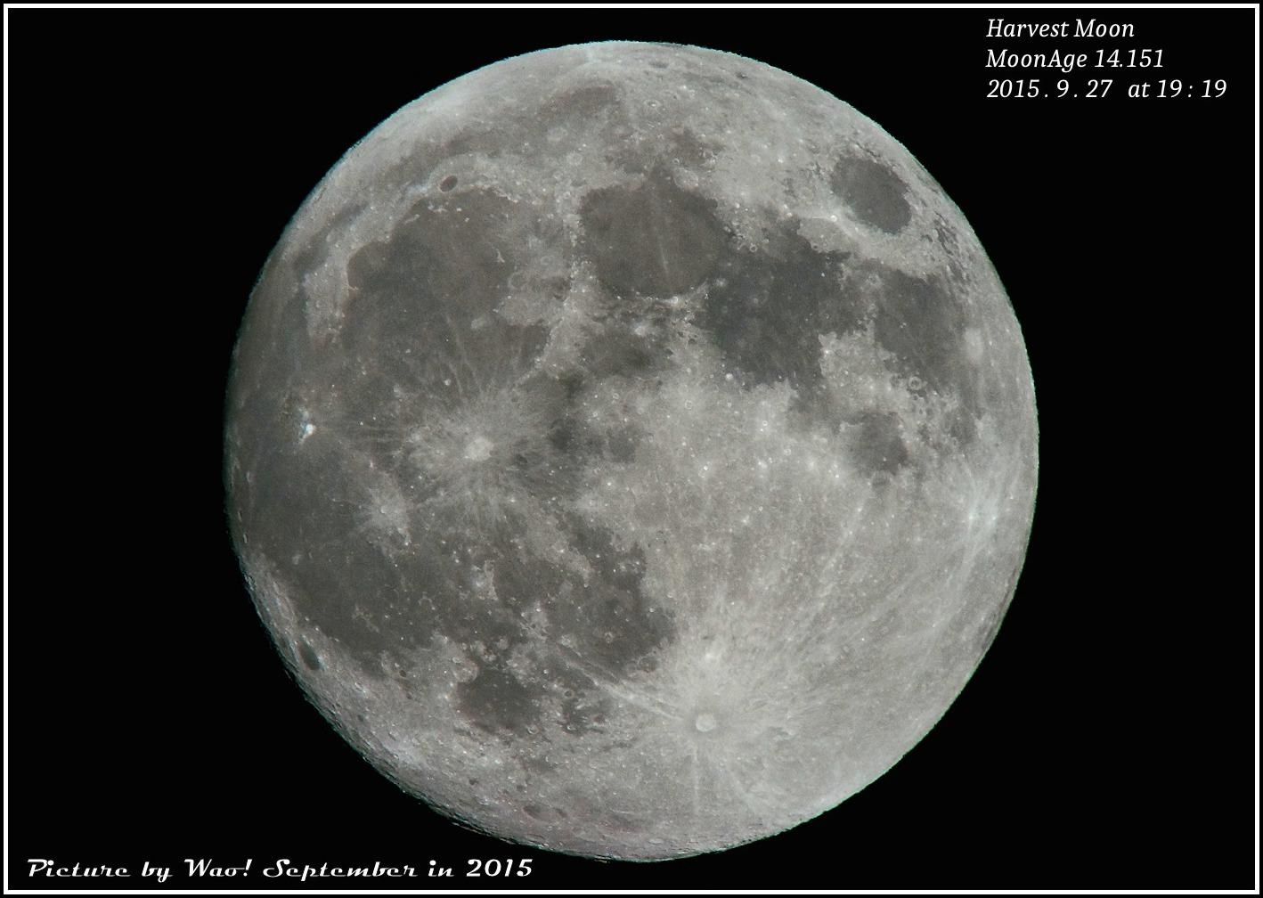 中秋の名月_c0198669_22225250.jpg