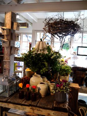 オランダflower shop ♪_d0113182_22511416.jpg