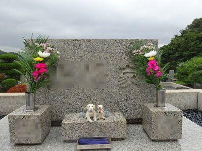 月命日に墓参り_e0222588_17372201.jpg