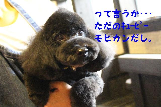 ハロウィ~ン♪_b0130018_2134886.jpg