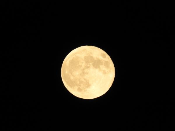 秋の夜長に月を眺めて_b0174425_23242840.jpg