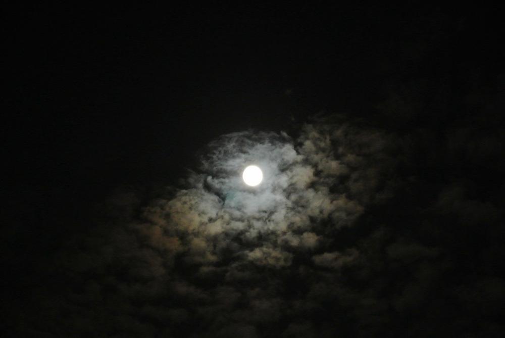 十五夜、中秋の名月(2015年9月27日)_e0089232_11292864.jpg