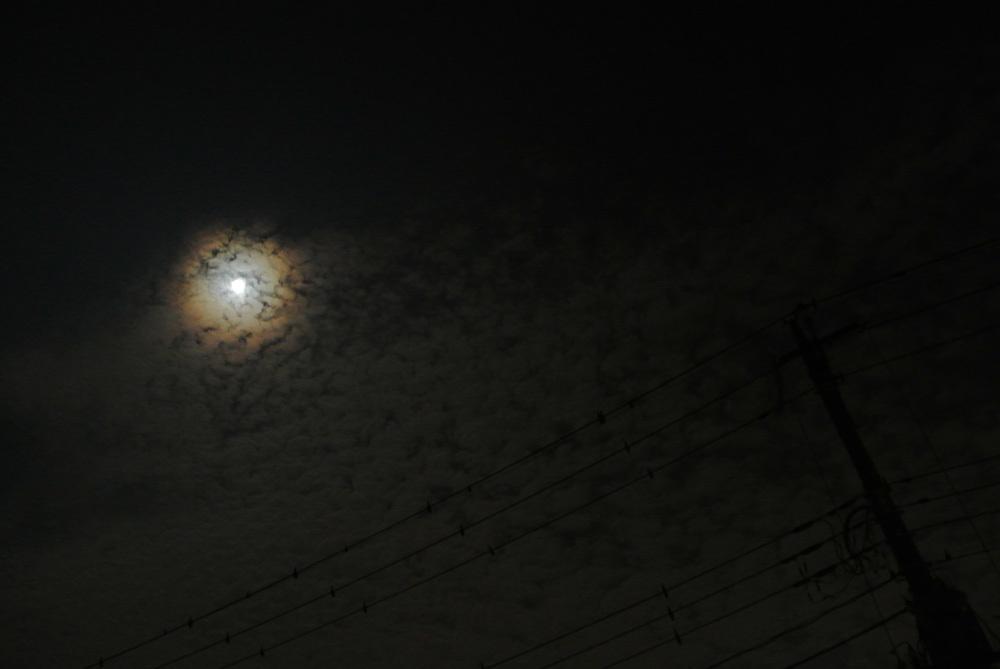 十五夜、中秋の名月(2015年9月27日)_e0089232_11300173.jpg