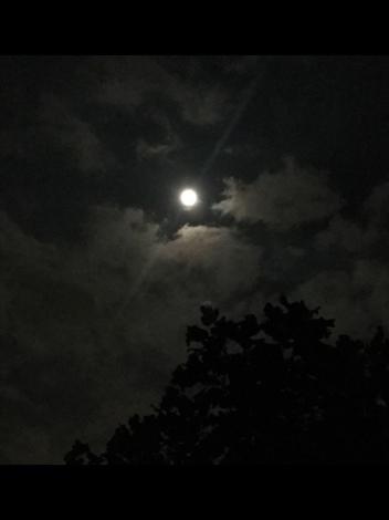 皆既月食&スーパームーンの神秘_b0213435_00071485.jpg