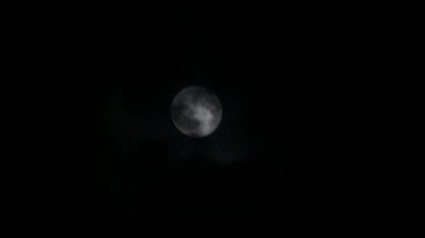 満月_e0166355_220531.jpg