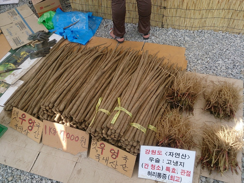 春川(チュンチョン)グルメと農産物産展_b0060363_23195562.jpg