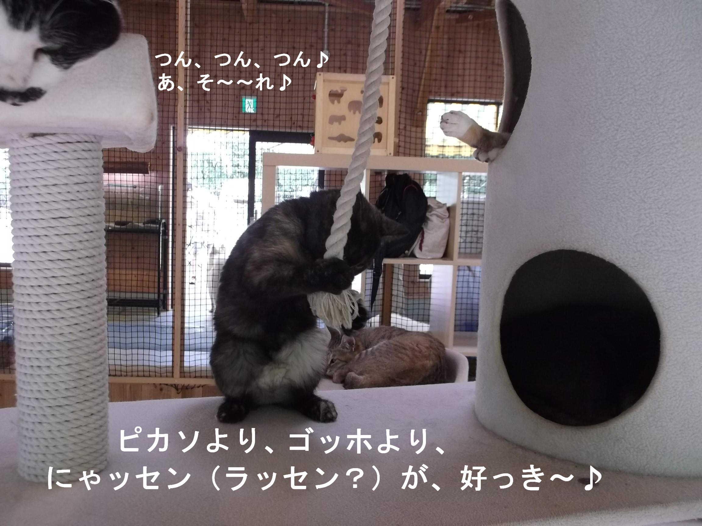 谷崎潤一郎伝_e0265768_1555943.jpg