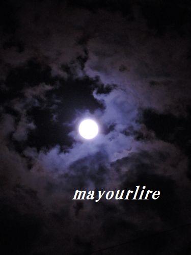 私のお月見♪_d0169179_22334859.jpg