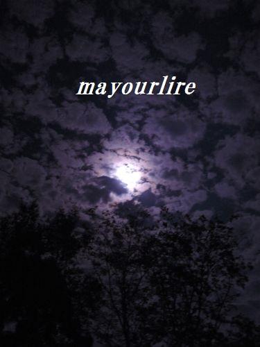 私のお月見♪_d0169179_22341019.jpg