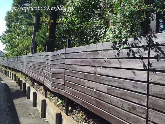 ウッドフェンスの完成_c0293787_14542672.jpg