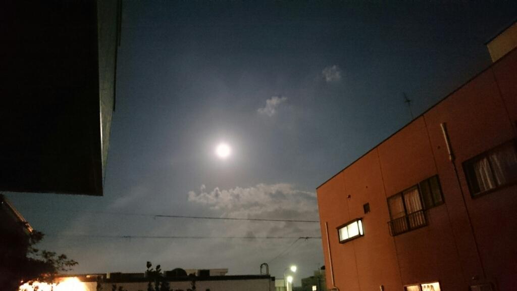山本の、10月の不在のお知らせ_b0211088_20151581.jpg