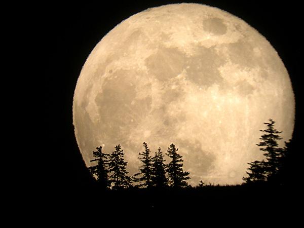 今日は、月、が、地球!に、一番、近い!スーパームーン!の日。_d0060693_19581651.jpg
