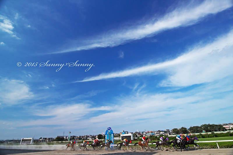 BLUE SKY_a0204724_18435637.jpg