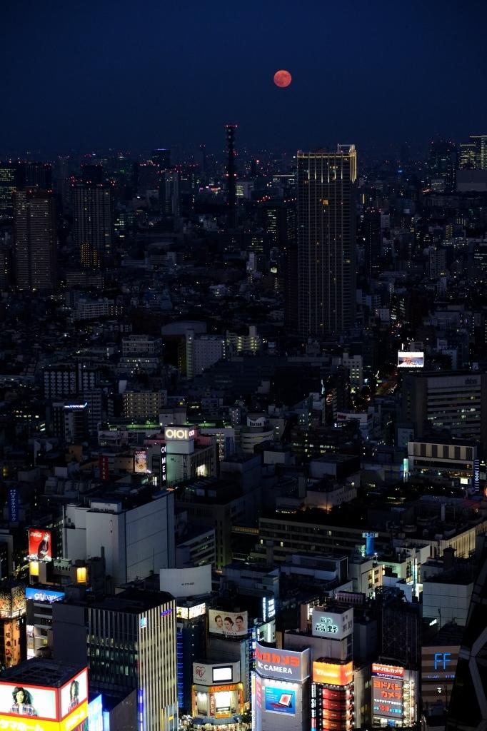 スーパームーン  ferom 新宿_f0050534_08162561.jpg