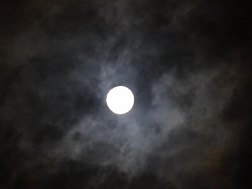 中秋の名月とスーパームーン♪_e0240147_15351577.jpg