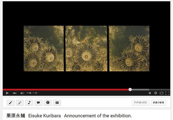 個展で展示する全作品を掲載した動画を公開しました。(I posted the video.)_e0224057_14475986.jpg