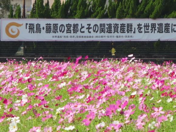 真・新世界遺産への道_c0001670_19555564.jpg