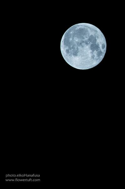 super moon_c0137872_01192756.jpg
