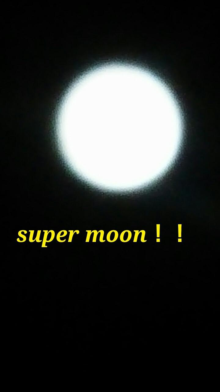 c0348784_17010580.jpg