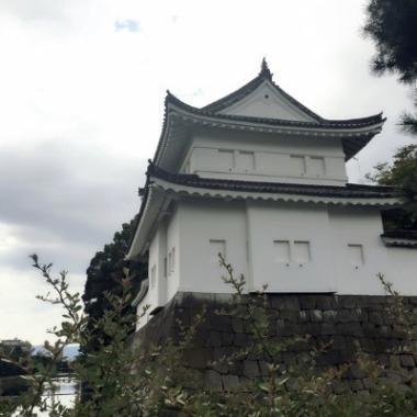 弾丸京都_c0237291_167067.jpg