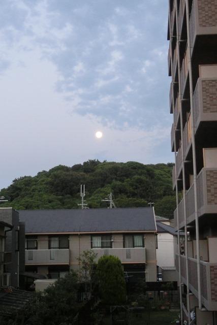 藤田八束の自然の美しさ@夕方から朝方に光輝く「スーパームーン」に希望を託す_d0181492_23241556.jpg