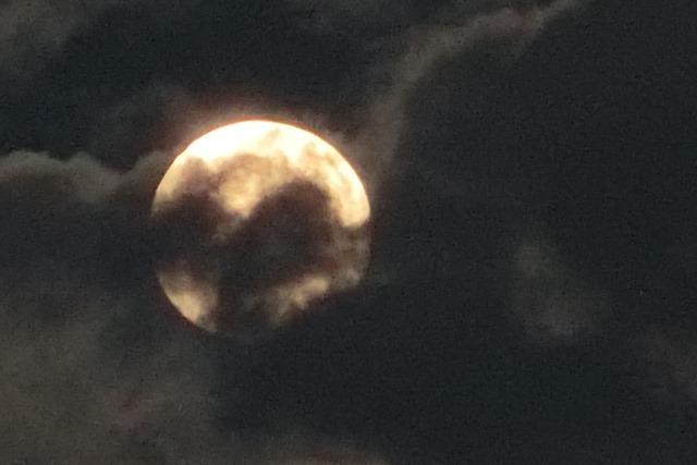 藤田八束の自然の美しさ@夕方から朝方に光輝く「スーパームーン」に希望を託す_d0181492_23252479.jpg