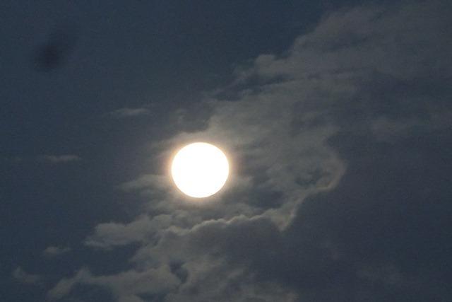 藤田八束の自然の美しさ@夕方から朝方に光輝く「スーパームーン」に希望を託す_d0181492_23254797.jpg