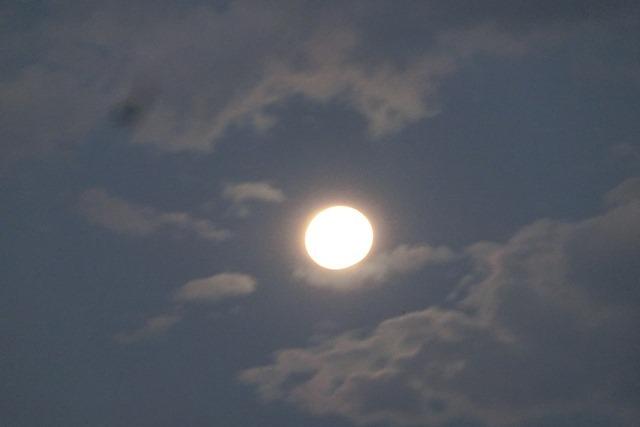 藤田八束の自然の美しさ@夕方から朝方に光輝く「スーパームーン」に希望を託す_d0181492_23264612.jpg