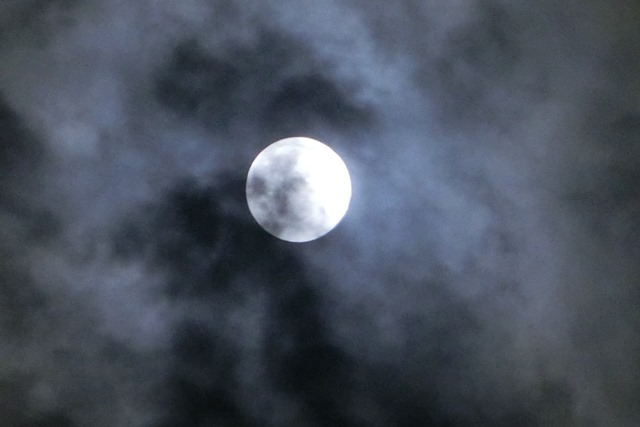 藤田八束の自然の美しさ@夕方から朝方に光輝く「スーパームーン」に希望を託す_d0181492_23283042.jpg