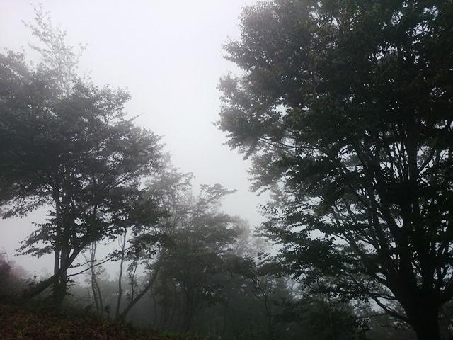雲海ならぬ雲塊_e0167593_142839.jpg