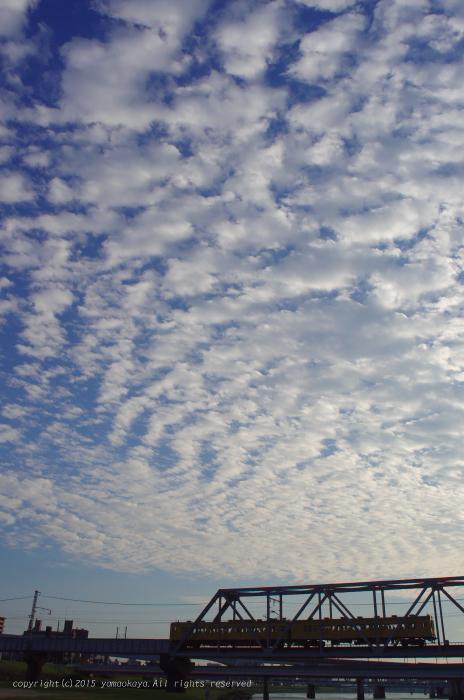 鰯雲の広がる_d0309612_23232489.jpg