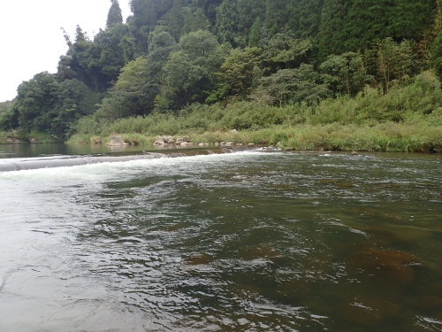 筑後川水系で釣り納め_a0315918_16585218.jpg