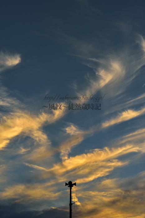 秋空に舞う。_f0235723_20392036.jpg
