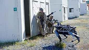 登場っ!『 アメリカ海兵隊の 軍用犬ロボット』/ 動画_b0003330_14135948.jpg