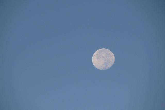 朝のお月様。_f0348831_23055412.jpg