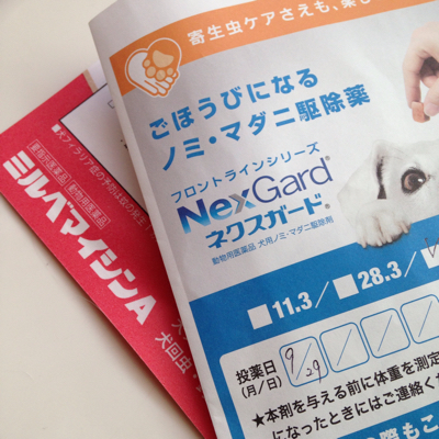 毎月のお薬_e0293553_18332106.jpg