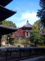 奈良 興福寺へ行ってきました_d0342155_13450806.jpg