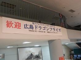 飛べ!ドラゴンフライズ_e0175370_915509.jpg